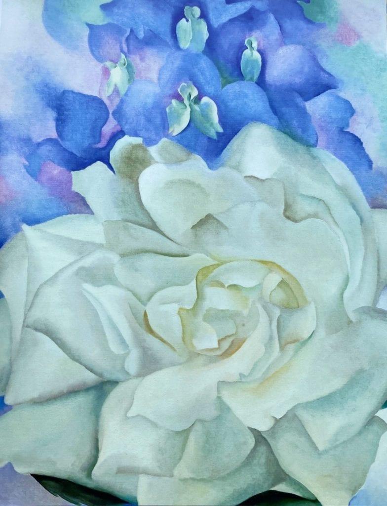 White Rose-and-Larkspur2- georgia-okeeffe 1927 -