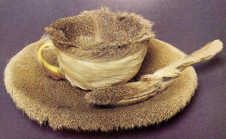 Object- Luncheon in Fur--Meret-Oppenheim